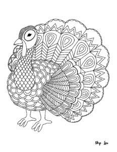 challenge turkey_page-0001